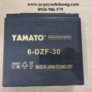 Ắc quy xe đạp điện Yamato 12V 30AH ( 6 DZF 30 )